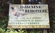normandie chasse
